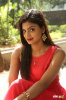 Anusha at Dyavudaa Movie Teaser Launch (18)