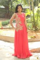 Anusha at Dyavudaa Movie Teaser Launch (7)