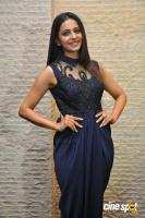 Rakul Preet Singh at Dhruva Salute To Audience Press Meet (4)