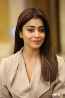Shriya Saran Latest Stills (11)