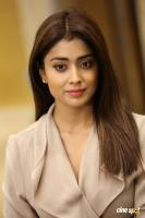 Shriya Saran Latest Stills (12)