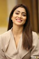 Shriya Saran Latest Stills (13)