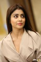 Shriya Saran Latest Stills (15)