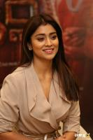 Shriya Saran Latest Stills (2)