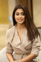 Shriya Saran Latest Stills (20)