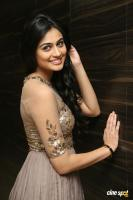 Neha Hinge at Sri Valli Movie Audio Launch (24)