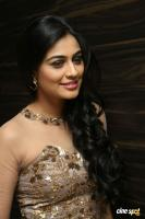Neha Hinge at Sri Valli Movie Audio Launch (28)