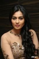 Neha Hinge at Sri Valli Movie Audio Launch (30)