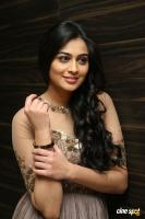 Neha Hinge at Sri Valli Movie Audio Launch (31)