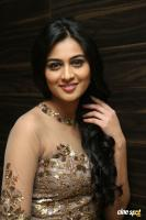 Neha Hinge at Sri Valli Movie Audio Launch (33)