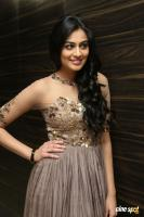 Neha Hinge at Sri Valli Movie Audio Launch (34)