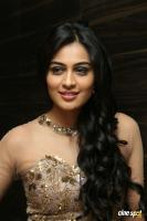 Neha Hinge at Sri Valli Movie Audio Launch (35)