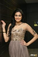 Neha Hinge at Sri Valli Movie Audio Launch (38)