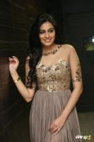 Neha Hinge at Sri Valli Movie Audio Launch (43)