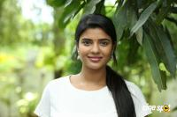 Jomonte Suvisheshangal Latest Photos (44)