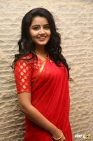 Anupama at Shatamanam Bhavati Success Meet (14)
