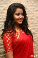 Anupama at Shatamanam Bhavati Success Meet (15)