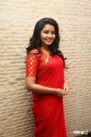 Anupama at Shatamanam Bhavati Success Meet (16)