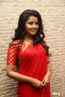 Anupama at Shatamanam Bhavati Success Meet (17)