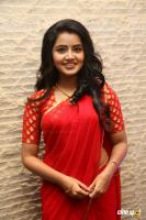 Anupama at Shatamanam Bhavati Success Meet (18)