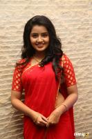 Anupama at Shatamanam Bhavati Success Meet (19)