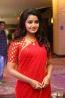 Anupama at Shatamanam Bhavati Success Meet (2)
