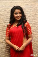 Anupama at Shatamanam Bhavati Success Meet (20)