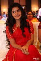 Anupama at Shatamanam Bhavati Success Meet (32)
