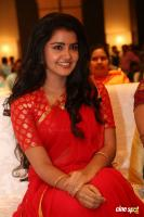 Anupama at Shatamanam Bhavati Success Meet (34)