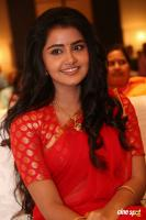 Anupama at Shatamanam Bhavati Success Meet (35)