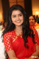 Anupama at Shatamanam Bhavati Success Meet (36)