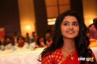 Anupama at Shatamanam Bhavati Success Meet (37)