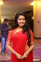 Anupama at Shatamanam Bhavati Success Meet (4)