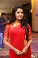 Anupama at Shatamanam Bhavati Success Meet (5)
