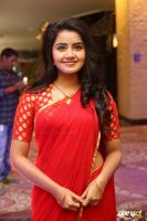Anupama at Shatamanam Bhavati Success Meet (6)