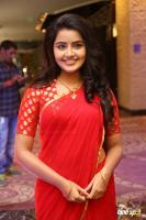 Anupama at Shatamanam Bhavati Success Meet (7)