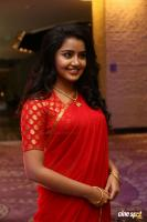 Anupama at Shatamanam Bhavati Success Meet (9)