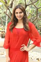 Huma Qureshi at Promotional Interview Of Jolly LLB 2 (1)