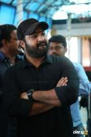 Jr Ntr at Jawaan Movie Opening (14)