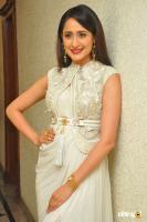 Pragya Jaiswal at Gunturodu Audio Launch (14)
