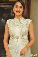 Pragya Jaiswal at Gunturodu Audio Launch (22)