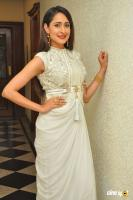 Pragya Jaiswal at Gunturodu Audio Launch (9)