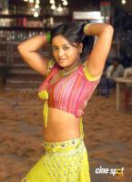 Tanu Roy actress photos (10)