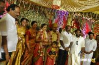 Vagai Chandrasekhar Daughter Marriage (10)