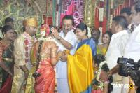 Vagai Chandrasekhar Daughter Marriage (16)