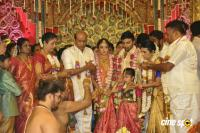 Vagai Chandrasekhar Daughter Marriage (18)