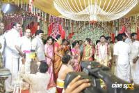 Vagai Chandrasekhar Daughter Marriage (9)