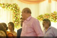 Lalu Alex Son reception photos (96)