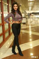 Shalu Chourasiya Latest Photos (7)