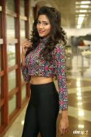 Shalu Chourasiya Latest Photos (9)